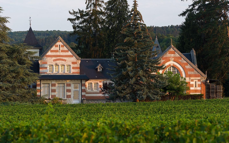 <p>Des vins puissants<br />offrant profondeur & élégance</p>